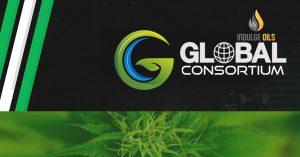 Global Consortium (GCGX)