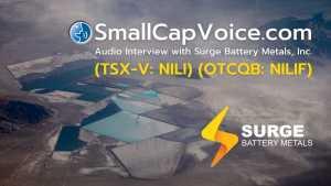 SmallCapVoice Audio Interview NILIF