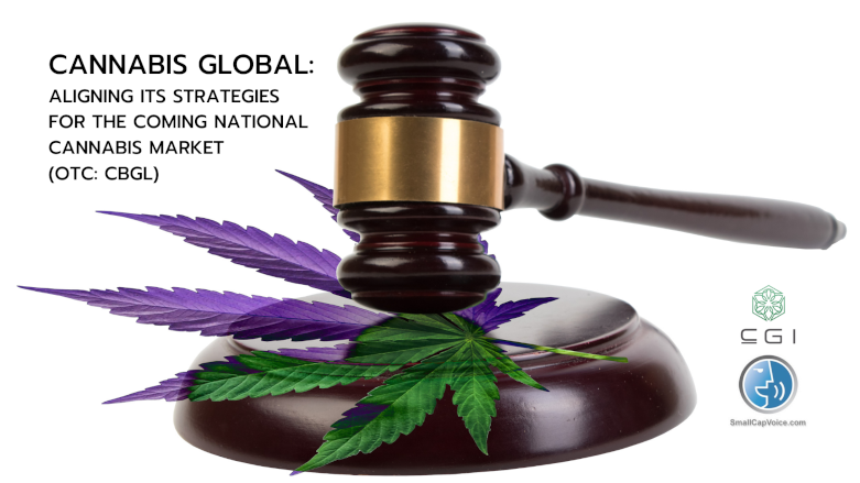a judges gavel with a marijuana leaf on it - smallcapvoice