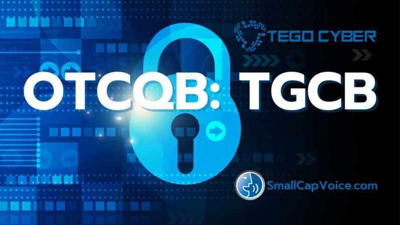 Tego Cyber, Inc.(OTCQB:TGCB) profile image - smallcapvoice.com